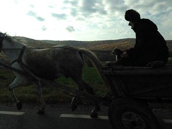 Farmer in Romania October 2015